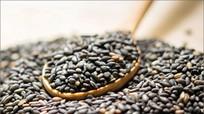 Lợi ích từ hạt mè đen đối với sức khỏe