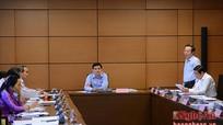 Đoàn Đại biểu Quốc hội tỉnh Nghệ An thảo luận nhiều vấn đề quan trọng