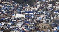 Những điều chưa từng biết về khu trại 'rừng rú' Calais