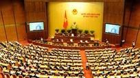 Quốc hội thảo luận các dự án luật về phòng chống ma túy