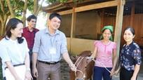Báo Nghệ An tặng bò sinh sản cho hộ nghèo ở Xiêng My