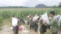 Sư đoàn 324 tuyên dương 14 tập thể và cá nhân giúp dân khắc phục lũ lụt