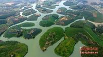 Mê hồn cảnh sắc đồi chè đẹp nhất Việt Nam