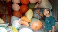 Nghệ An: Dược liệu quý rớt giá thê thảm