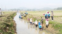 Quỳnh Lưu hoàn thành hơn 95% khối lượng giao thông thủy lợi
