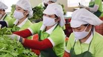 Đảm bảo an toàn thực phẩm trong mục tiêu phát triển bền vững