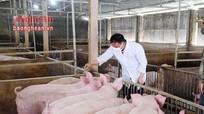 Các biện pháp chăm sóc đàn vật nuôi trong mùa đông