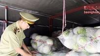 Xe tải chở đầy bắp cải Trung Quốc về Nghệ An tiêu thụ