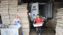 Hoàng Mai tôn vinh 60 nông dân sản xuất kinh doanh giỏi