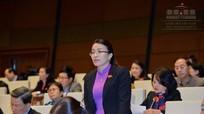 Đại biểu Hoàng Thu Trang: 'Cử tri quan ngại về chất lượng hậu kiểm tại các dự án có nguy cơ về môi trường'