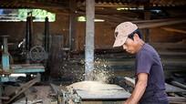 Nghệ An: Trên 15.000 tỷ đồng hỗ trợ giảm nghèo bền vững