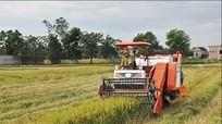 Cần chi trả kịp thời hỗ trợ máy cày nông nghiệp