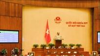 Quốc hội thông qua danh mục 243 ngành, nghề đầu tư kinh doanh có điều kiện