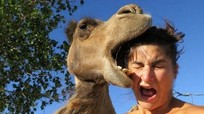 Những bức ảnh hài hước về khách du lịch