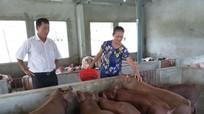 Nghi Lộc tôn vinh 60 nông dân sản xuất kinh doanh giỏi