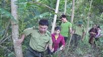 Góp phần thực hiện chính sách chi trả dịch vụ môi trường rừng