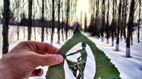 Độc đáo nghệ thuật 'điêu khắc' lá cây