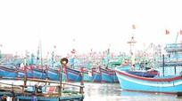 Tránh độc quyền trong cung ứng dịch vụ bảo hiểm tàu cá