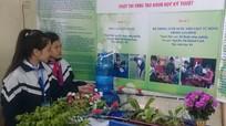 TP.Vinh: 47 sản phẩm của học sinh THCS tham gia cuộc thi sáng tạo khoa học kỹ thuật