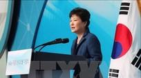 Tổng thống Hàn Quốc Park Geun-hye bị cáo buộc vi phạm Hiến Pháp