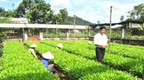 Sửa đổi, bổ sung một số điều Nghị định 99 về chính sách chi trả dịch vụ môi trường rừng