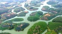 Chuyện lạ: 13/14 thôn đặc biệt khó khăn ở xã có đảo chè 'đẹp nhất Việt Nam'
