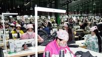 Nghệ An khởi kiện công ty may nợ đọng bảo hiểm xã hội