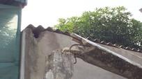 Xe bê tông kéo gãy cột điện, bể mái lợp nhà dân