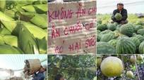 'Mạnh tay' dập tin đồn thất thiệt gây hại nhà nông