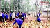 Chàng trai xứ Nghệ nuôi gà được mời sang Lào chia sẻ kinh nghiệm