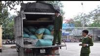Bắt giữ 1,1 tấn hạt bí không rõ nguồn gốc