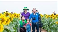 5 điều nên thử khi ghé thăm cánh đồng hoa hướng dương