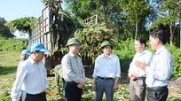 Huyện Anh Sơn: Quyết tâm chính trị cao, hoàn thành các chỉ tiêu năm 2017