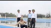 Quỳnh Lưu: Vươn lên khẳng định vị thế huyện tốp đầu