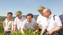 Toàn cảnh nông nghiệp Nghệ An 2016