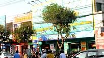 Nghệ An xem xét cấm đậu xe trên đường Nguyễn Thị Minh Khai