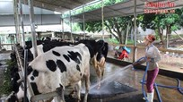 Khuyến nông gắn với KHCN và tiêu thụ sản phẩm