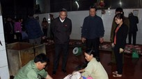 Đoàn giám sát Quốc hội kiểm tra cơ sở giết mổ, trại bò và rau sạch