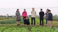 Nhật Bản hỗ trợ đầu tư các mô hình 'dẫn đường' ở Nghệ An