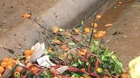 Vô tư xả rác ngay tại các chợ hoa ở thành phố Vinh