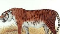 Hổ Ba Tư tuyệt chủng có thể được hồi sinh ở Trung Á