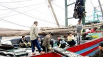 Ngư dân miền Trung 'được mùa' đánh bắt hải sản