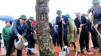 Nghệ An: Phát động trồng 17.000 ha rừng trong năm 2017