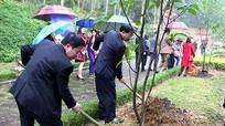 HĐND tỉnh trồng 10 cây ngọc lan tại Khu mộ bà Hoàng Thị Loan