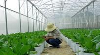 Khẳng định gói 100.000 tỷ cho sản xuất nông nghiệp công nghệ cao
