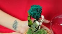 Hoa hồng 'tươi mãi mãi' gần triệu đồng một bông