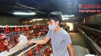 Nghệ An: 130 hộ nông dân sản xuất, kinh doanh giỏi được suy tôn