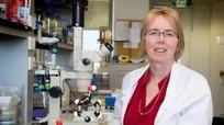 Các nhà khoa học Úc tìm ra hướng trị vi khuẩn kháng kháng sinh