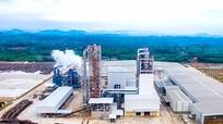 Nhà máy Chế biến gỗ Nghệ An - điểm sáng thu hút đầu tư