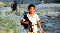 Những ngư dân 'nhí' vùng cao Nghệ An